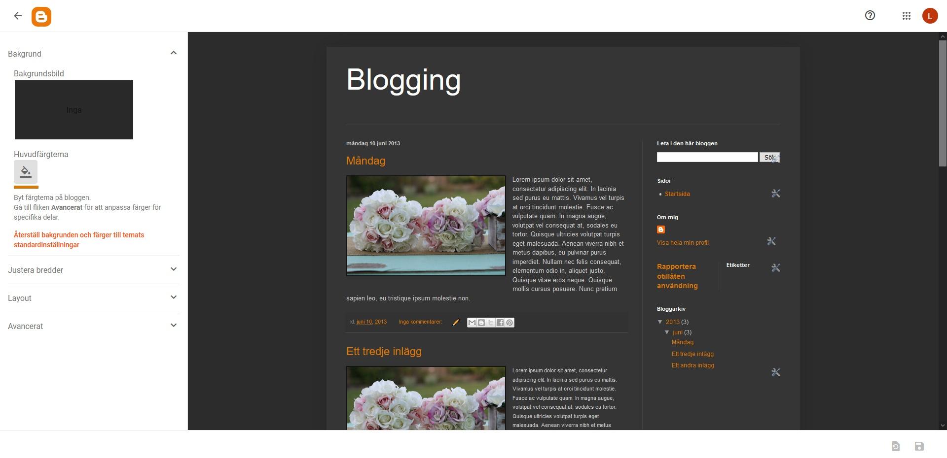 Blogger Anpassaren. Nybörjarguide WordPress DNS SEO.
