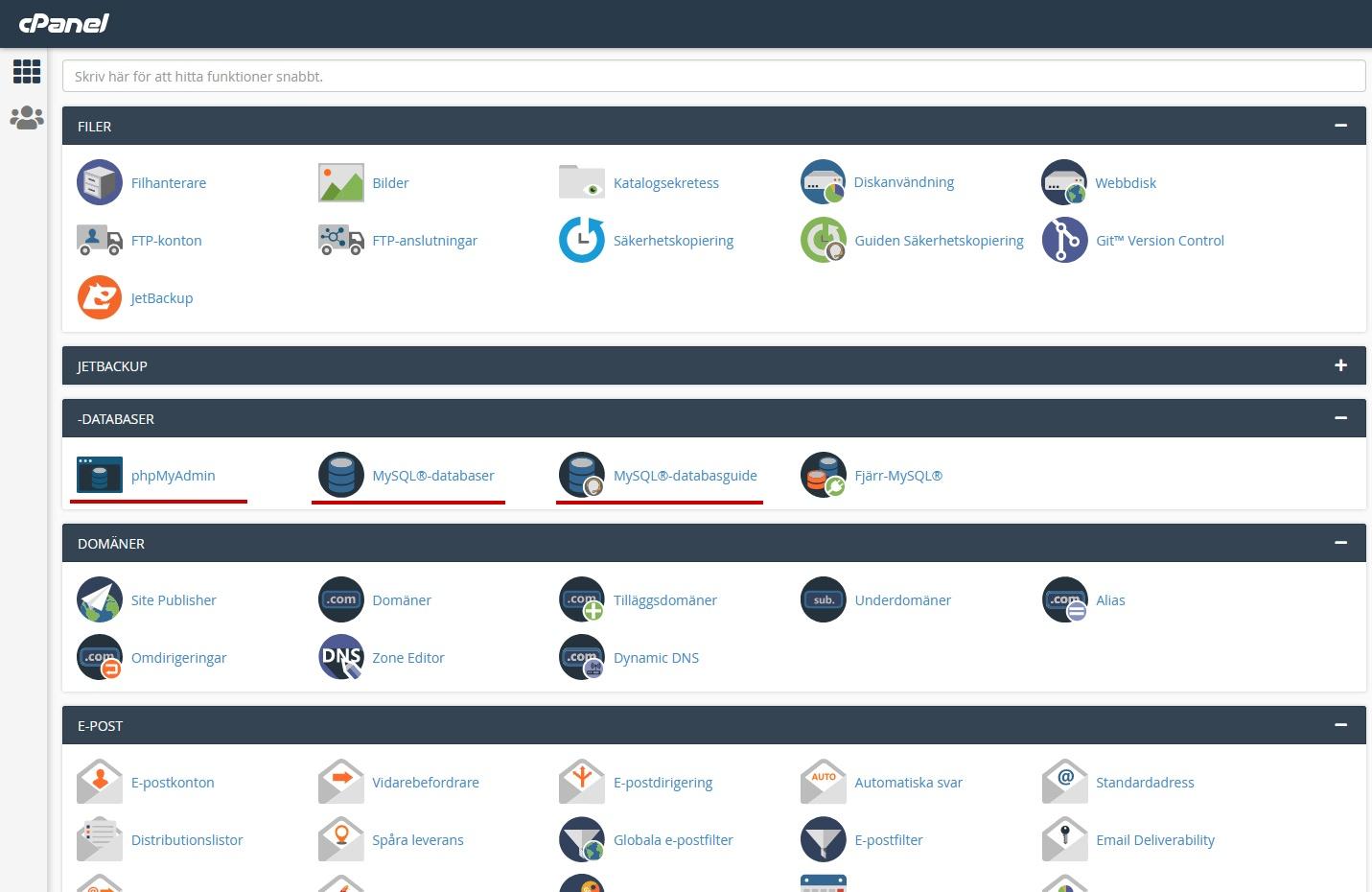 En cPanel översikt. Nybörjarguide WordPress DNS SEO
