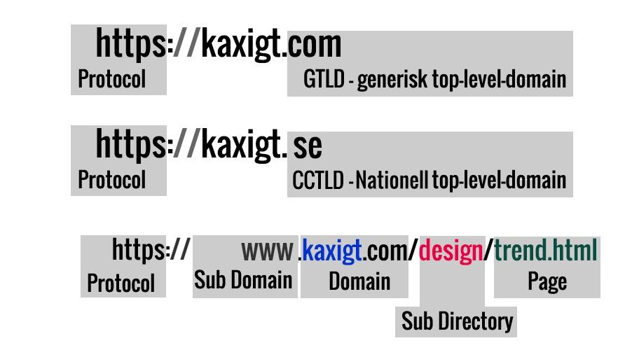 Sub Domain Top Domain SEO
